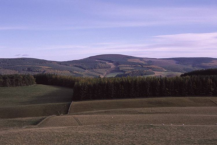 Traquair Morning folks This week we are sharing Alastair Cookshellip