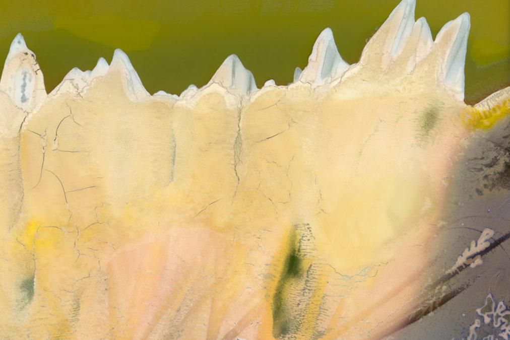 WARPED TOPOGRAPHIES   Richard Earney