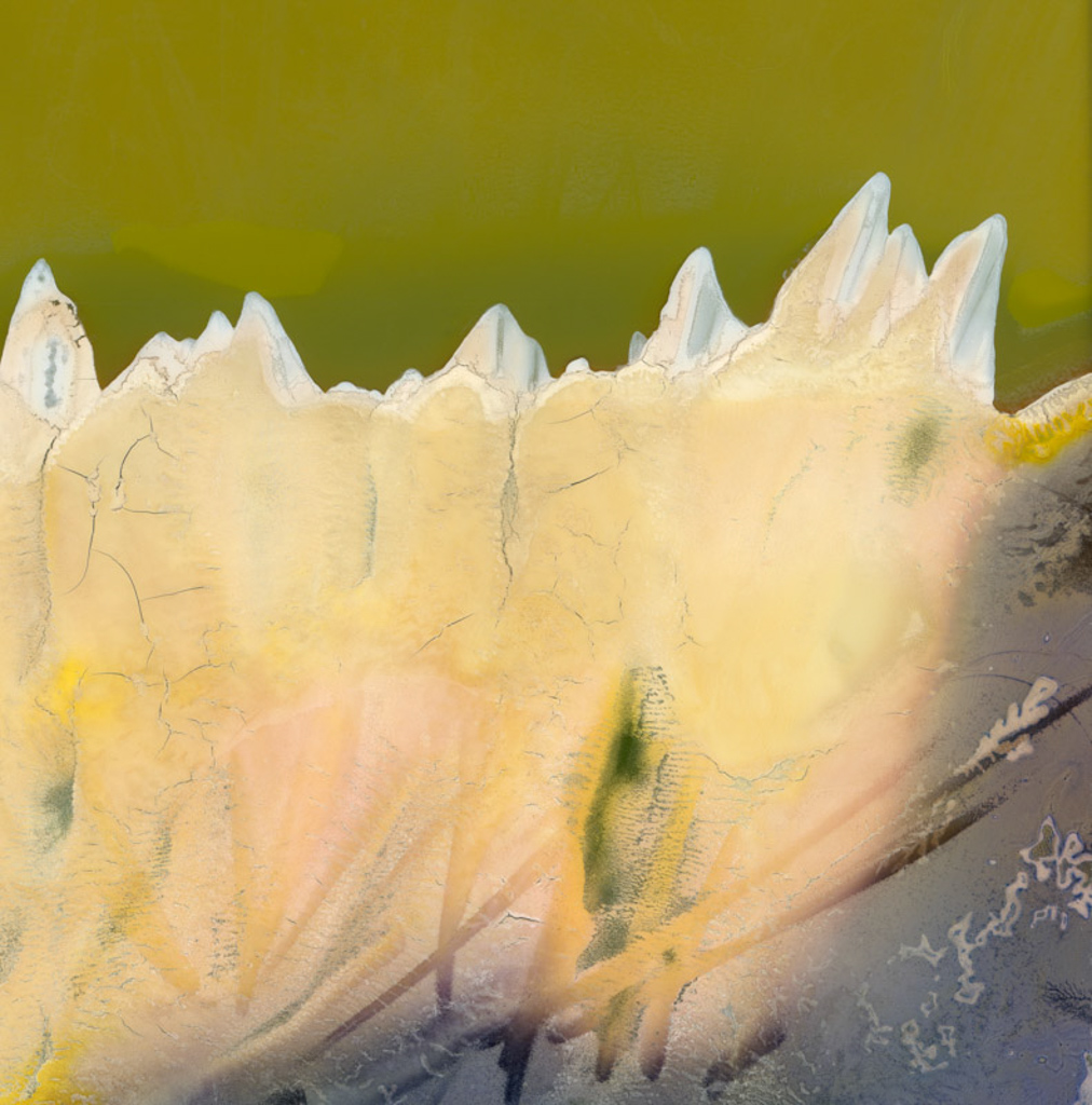 WARPED TOPOGRAPHIES | Richard Earney - Inside the Outside