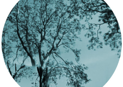 Unseen Landscapes #06