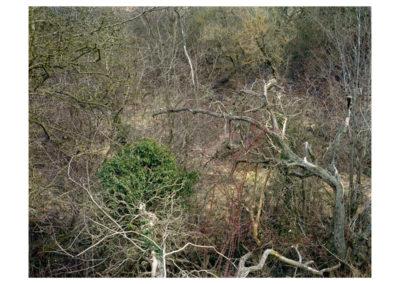 Chora - Totley Brook 1