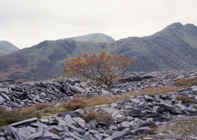 Snowdonia Revisited © Robert Law